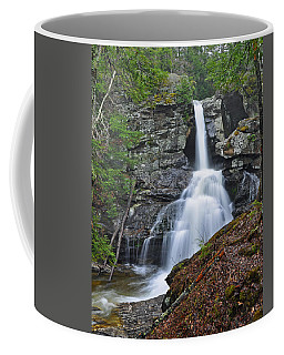 Kent Falls State Park Ct Waterfall Coffee Mug