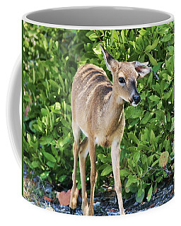 Key Deer Cuteness Coffee Mug