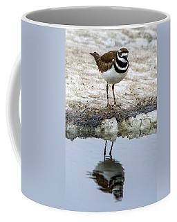 Kildeer Reflecting Coffee Mug