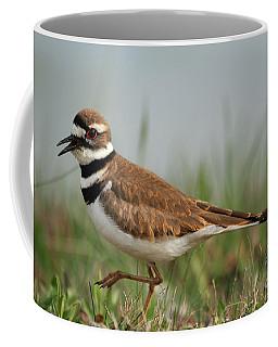 Coffee Mug featuring the photograph Killdeer by Geraldine DeBoer