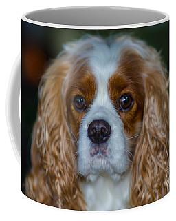 King Charles Coffee Mug