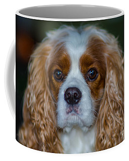 King Charles Coffee Mug
