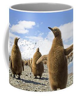 King Penguin Chicks South Georgia Island Coffee Mug