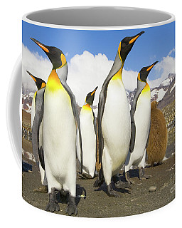 King Penguins At St Andrews Bay Coffee Mug