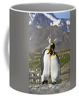 King Penguins Courting St Andrews Bay Coffee Mug