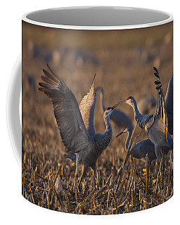 Kissing Sandhills Coffee Mug