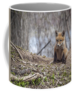 Kit Fox 2011-1 Coffee Mug