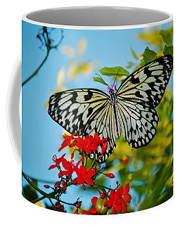 Coffee Mug featuring the photograph Kite Butterfly by Peggy Franz