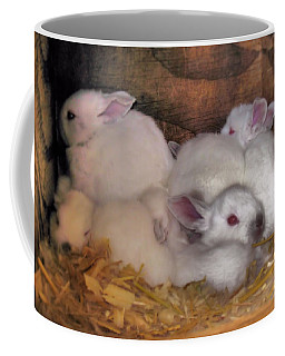 Kits In A Box Coffee Mug