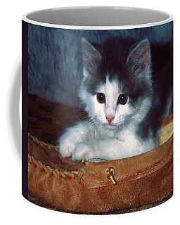 Kitten In Slipper Coffee Mug by Sally Weigand