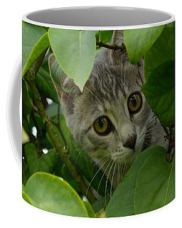 Kitten In The Bushes Coffee Mug