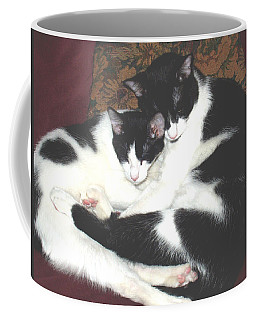 Coffee Mug featuring the photograph Kitty Love by Marna Edwards Flavell