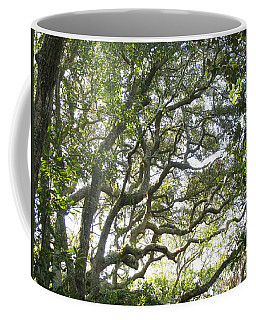 Knarly Oak Coffee Mug