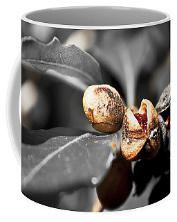 Coffee Mug featuring the photograph Knew Seeds Of Complentation by Miroslava Jurcik