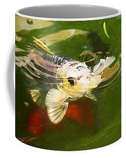 Koi Fish Coffee Mug by Jennifer Muller