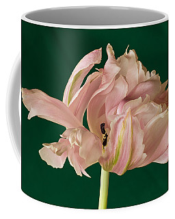 Lacey Tulip Coffee Mug
