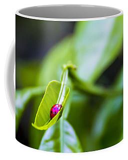 Ladybug Cup Coffee Mug