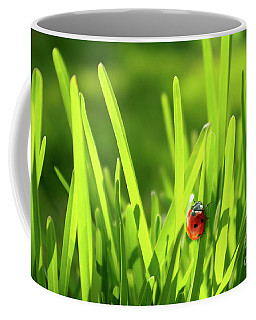 Ladybug In Grass Coffee Mug by Carlos Caetano