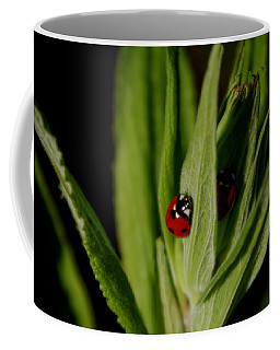 Coffee Mug featuring the photograph Ladybugs by Adria Trail