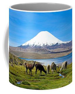 Lake Chungara Chilean Andes Coffee Mug