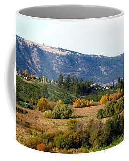 Oyama Coffee Mugs