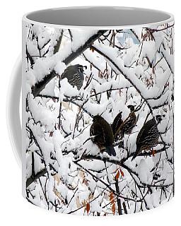 Lake Country Quail Coffee Mug