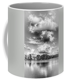 Coffee Mug featuring the photograph Lake De Soto by Howard Salmon