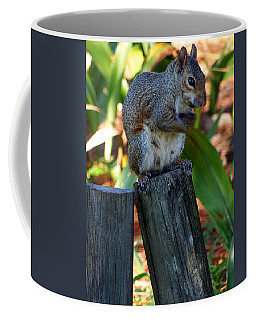 Coffee Mug featuring the photograph Lake Howard Squirrel 019 by Chris Mercer