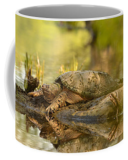 Lake Master Coffee Mug