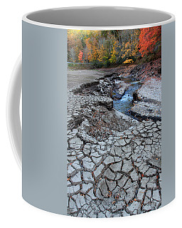 Lake No More Coffee Mug