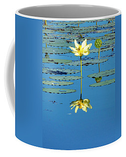 Lake Thomas Water Lily Coffee Mug