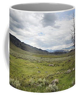 Coffee Mug featuring the photograph Lamar Valley No. 1 by Belinda Greb
