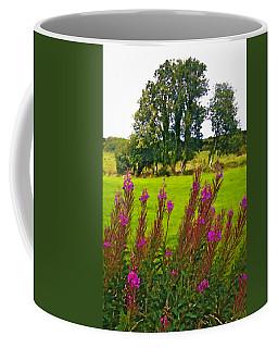Lanna Fireweeds County Clare Ireland Coffee Mug