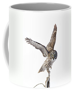Lapland Owl On White Coffee Mug
