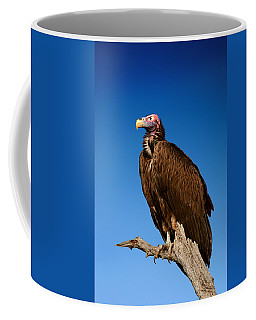 Lappetfaced Vulture Against Blue Sky Coffee Mug