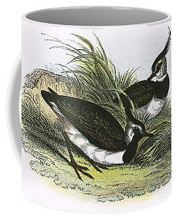 Lapwing Coffee Mug
