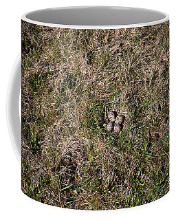 Lapwing Nest Coffee Mug