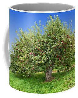 Large Apple Tree Coffee Mug