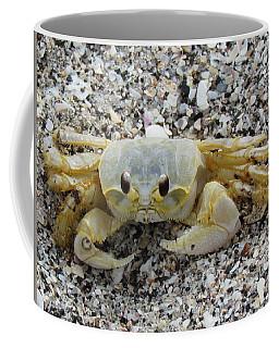 Coffee Mug featuring the photograph Ghost Crab by Cynthia Guinn