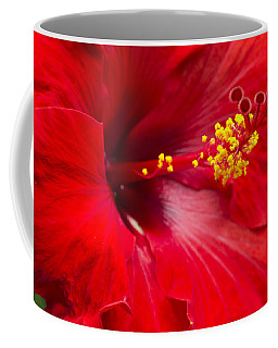 Coffee Mug featuring the photograph Large Red Hibiscus by Leigh Anne Meeks