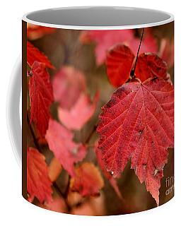 Last Fall Colors Coffee Mug