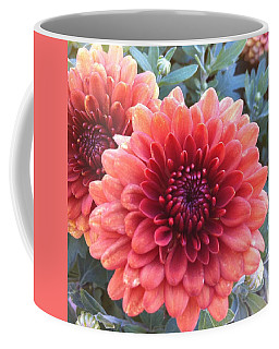 Coffee Mug featuring the photograph Last Of The Summer by Denyse Duhaime