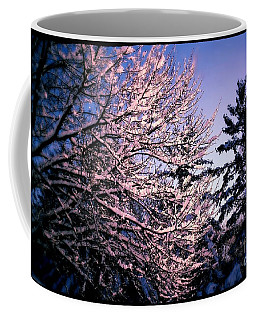 Last Peek Of Winter Sun Coffee Mug