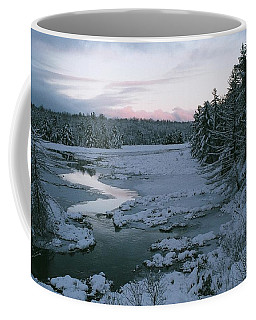 Coffee Mug featuring the photograph Late Afternoon In Winter by David Porteus