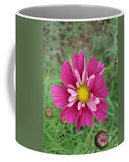 Lavender Cosmo Coffee Mug
