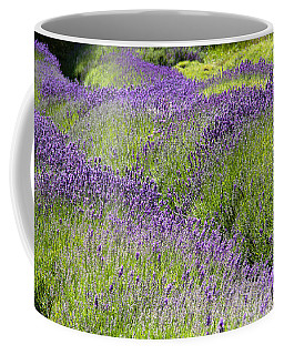 Lavender Day Coffee Mug by Kathy Bassett