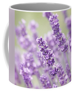 Coffee Mug featuring the photograph Lavender Dreams by Kim Hojnacki