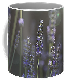 Coffee Mug featuring the photograph Lavender Flare. by Clare Bambers