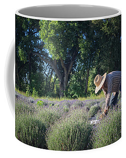 Lavender Harvest Coffee Mug