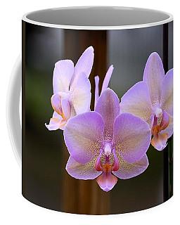 Lavender Orchid Coffee Mug by Kathy Eickenberg